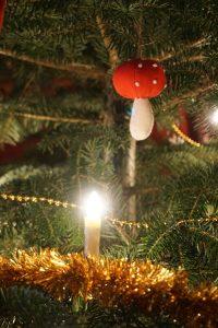 11. Hofweihnacht zum 3. Advent